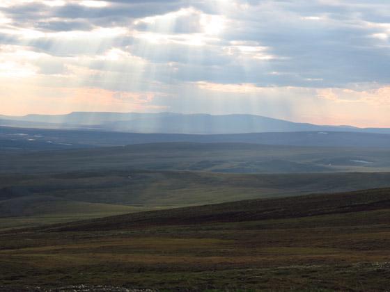 plateau or arctic