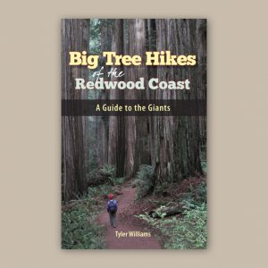 Big Tree Hikes – Redwood