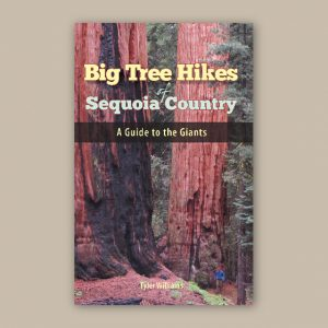Big Tree Hikes – Sequoia